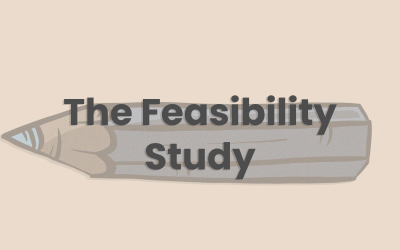 Feasibility Study for 'At-risk' Young People